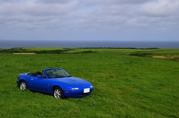 海が見える素敵な草原に置かれたマリナーブルーのロードスター