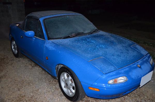 霜で凍ったマリナーブルー