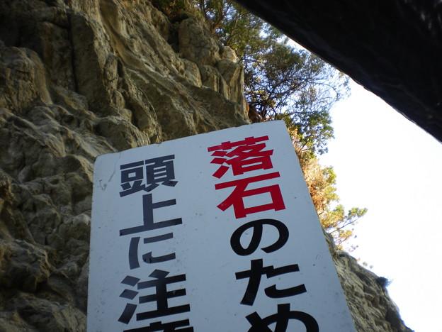 arasakikouen22