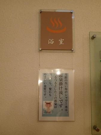 25 9 群馬 小野上温泉センター 4
