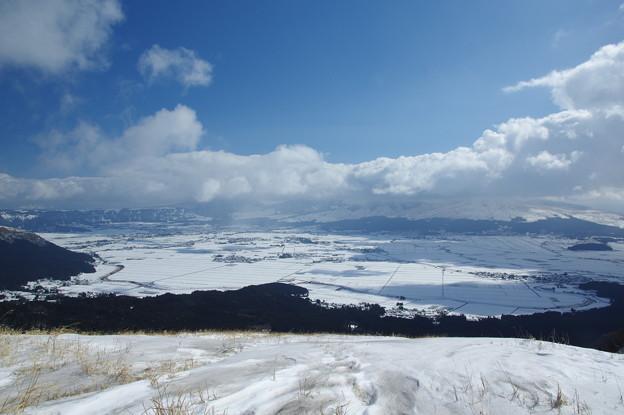Photos: 銀世界♪?