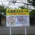 写真: 大相撲ストリート