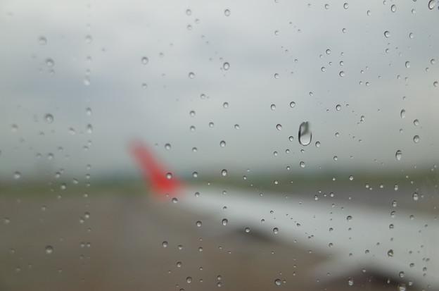RAIN FLIGHT