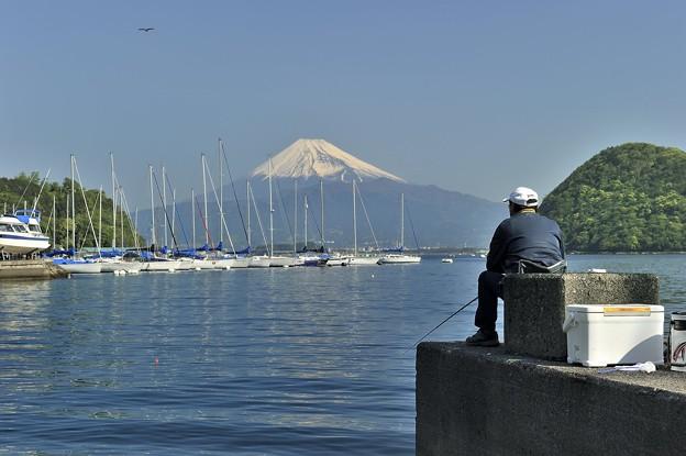 富士と対峙