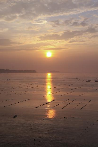 宮城 志津川湾の朝焼け