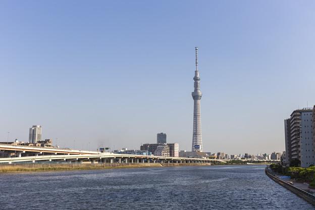 スカイツリーと隅田川