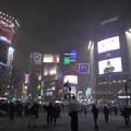 写真: 雪の日の渋谷