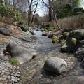 写真: 石だらけの川