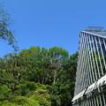 Photos: 温室と青空