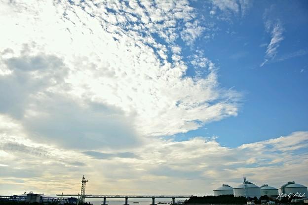 The summer sky