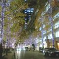 Photos: 東京・丸の内