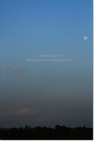 11/1 富士山と月