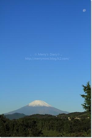 11/2の富士山とお月さま