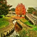 Photos: 千波湖公園