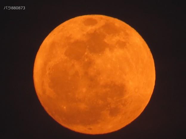 出始めの小望月