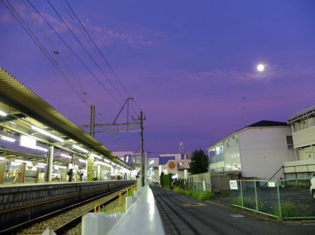 月夜 桜上水 2012/08/29