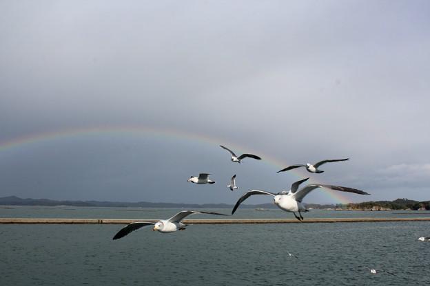 25.11.8しおがま寿司クルーズ船から見た松島湾