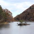 Photos: 24.11.16サイカチ沼の紅葉