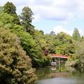 Photos: 古城公園