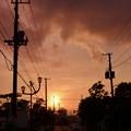Photos: 帰り道