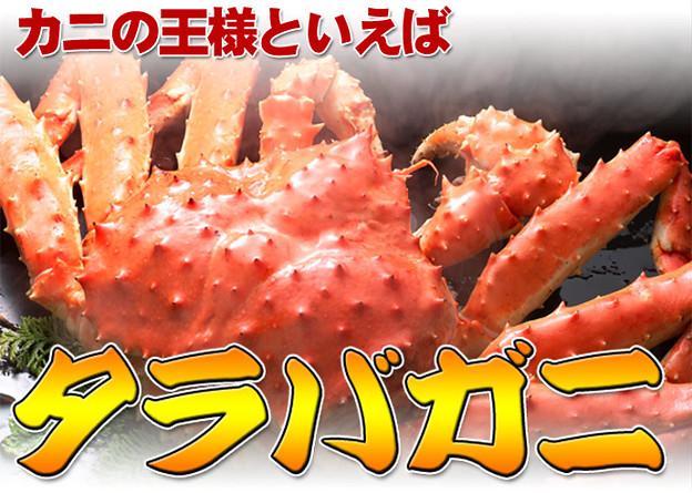 「蟹の王様」タラバガニ!極太の蟹肉はボリュームたっぷり♪