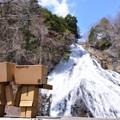 Photos: 「あれが湯滝!」「ほー・・・」
