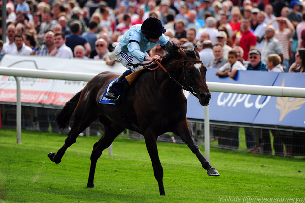 07.Telescope en route to win -Neptune Investment Management Great Voltigeur Stakes-
