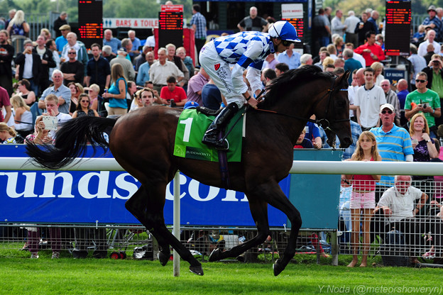 12.Al Kazeem & James Doyle -Juddmonte International Stakes-