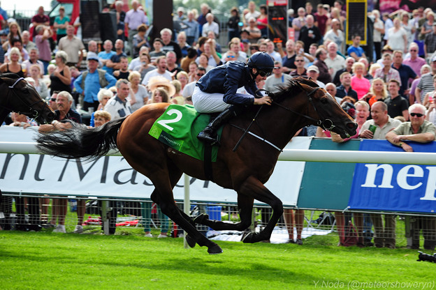18.Declaration Of War keeps on powerfully to take victory -Juddmonte International Stakes-