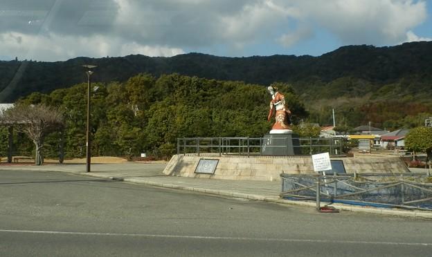 写真: 灘黒岩水仙郷9