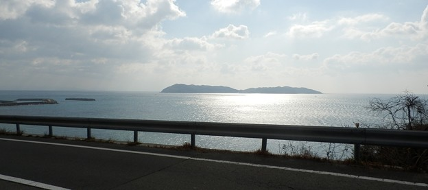 写真: 灘黒岩水仙郷18