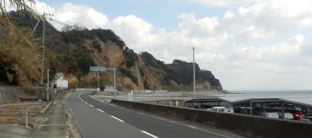 写真: 灘黒岩水仙郷19