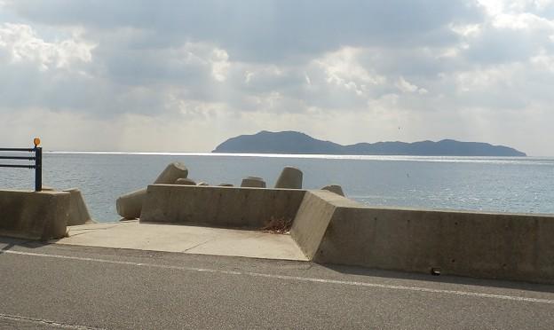 写真: 灘黒岩水仙郷21