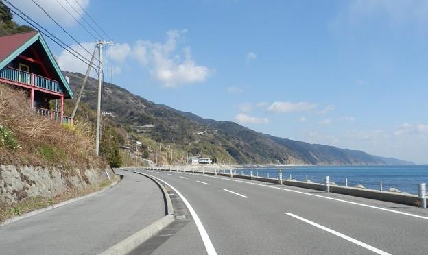 写真: 灘黒岩水仙郷23