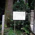 写真: 市川町・岩戸神社の説明