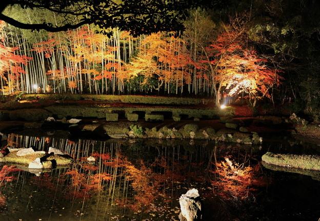 常栄寺 雪舟庭 - 写真共有サイト「フォト蔵」