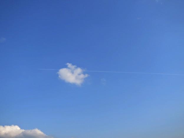 写真: 雲を突き抜けて